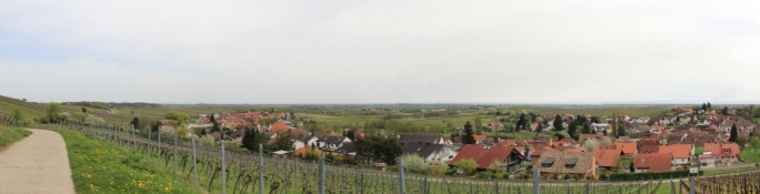 Weinberge um Pleisweiler