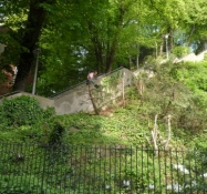 ʺHimmelstigenʺ hedder denne trappe i Altona/ʺStairway to heavenʺ are these steep steps called