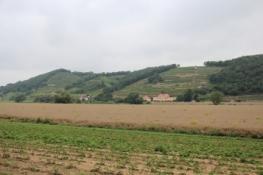 Elberadweg bei Batzdorf