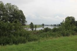 An der Elbe bei Strehla