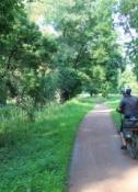 Am elbnahen Radweg vor Aken