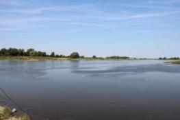 Elbe bei Barby