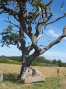 Mindesten til ære for krigsflygtninge fra 1945/Memorial stone, honouring war refuges of 1945