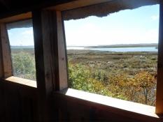 Kig ud af fugletårnet på Monnet/View from the bird watchtower on Monnet