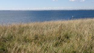 Udsigt til mange øer og holme i det sydfynske øhav/Many islands and islets in the archipelago