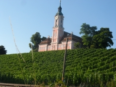 Birnau klosterkirke på toppen af vinmarken/The abbey church of Birnau on top of a vineyard