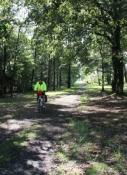 Bahnradweg mit schlechter Wegoberfläche
