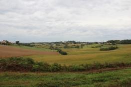 Landschaft bei Montfort-en-Chalosse