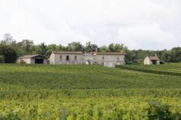 Weingut an der Piste Cyclable Roger Lapébie