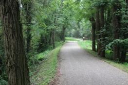 Radweg an der Loire, gut ausgebaut und eben