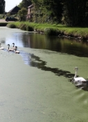 am Canal dʹOrléans