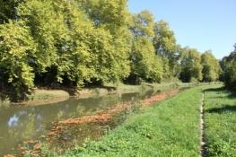 am Canal dʹOrléans - die Fahrspur ist nochmals schmaler geworden