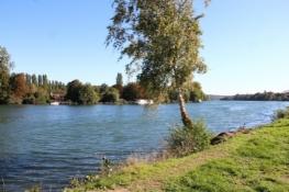 Am Ufer der Seine