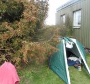 Mit telt i læ for vestenvinden/My tent in shelter from the breeze