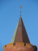 Toppen af Gåsetårnet i Vordingborg/The top of the ʺGoose towerʺ in Vordingborg