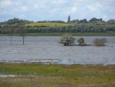 Vandet lukkes ind i en hidtil udtørret sø/A previously dried out lake is flooded again