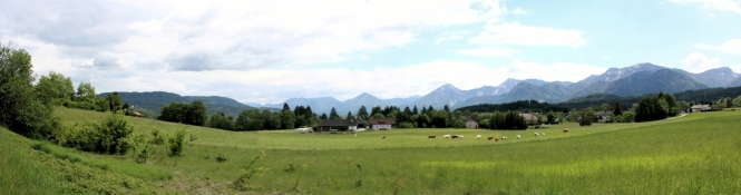 Landschaft bei Mühlbach