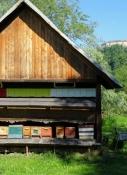 Bienenhaus bei Kirschentheuer
