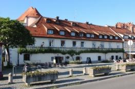 400-jähriger Rebstock in Maribor