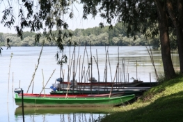 Boote am Donauufer