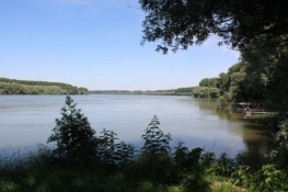 Am Donauufer bei Susek