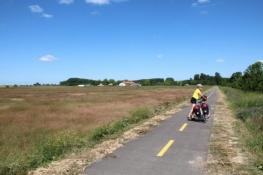 Radweg kurz hinter Csongrád