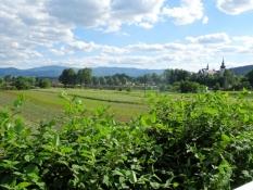 Blick zurück auf Stari Sącz