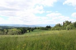 ... noch mehr Hügel
