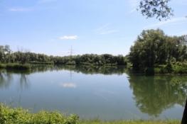 Seen zwischen Niepołomice und Pleszów
