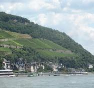 Vinklædte bjerge og udflugtsbåde på Rhinen/Low mountains, clad in vineyards and ships on the Rhine