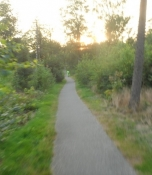 Fuld fart på asfaltpister igennem skovene/Speeding along on tarmac tracks through the woods