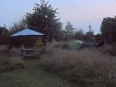 Godnat i teltet med øl fra køleskabet/Good night in the tent with beer from the fridge