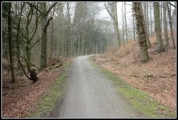 Bahntrassen-Velo-Weg in Schieder-Borkhausen