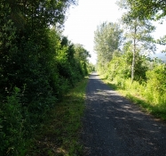 Drauradweg bei Olsach