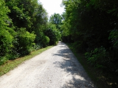 Radweg (FVG1) bei Lovaria