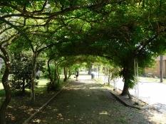 Grado: Parco Delle Rose