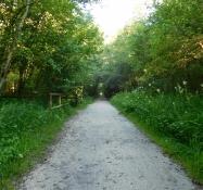 Radweg nach Camping Sarathei