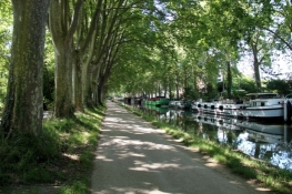 Canal du Midi, southeast of Toulouse