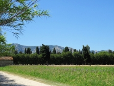 View of the Alpilles