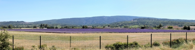 Landscape in the north of the Luberon