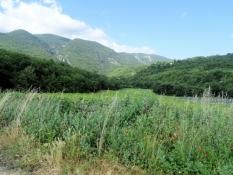 Picture  from 11. Etappe: Apt - Manosque