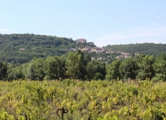 Saint-Martin-de-Pallières