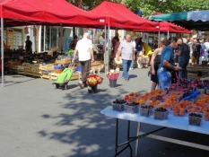 Weekly market in Draguignan