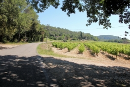 Cycle route EV8 between Draguignan and Callas