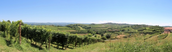 Vineyards and orchards and the typical location of the villages on hilltops