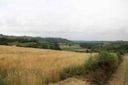 Landschaft vor San Desiderio