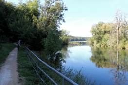 Donau bei Scheer