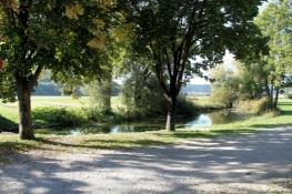 An der Donau bei Stetten