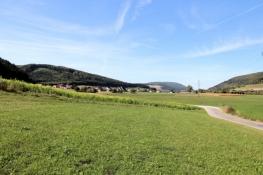 Im Donautal vor Hintschingen