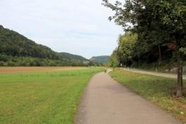 Zwischen Epfendorf und Altoberndorf